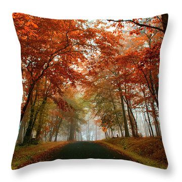 Inner Line Road At Valley Forge Throw Pillow
