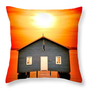 Shed Throw Pillows