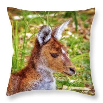 Inner Peace, Yanchep National Park Throw Pillow by Dave Catley