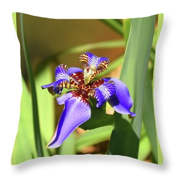 Throw Pillow featuring the photograph Inner Secrets by Sally Sperry