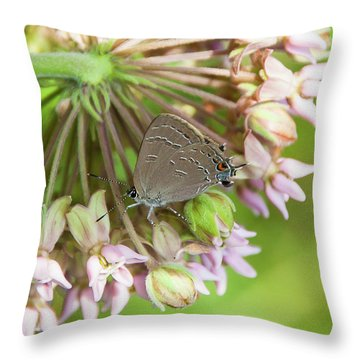 Inp-1 Throw Pillow