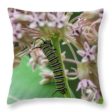 Inp-3 Throw Pillow