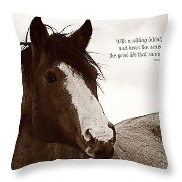 Inquisition Eyes And Ears Throw Pillow