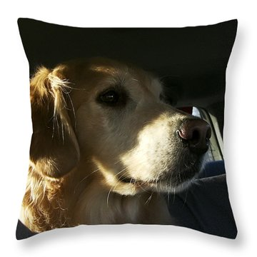 Inquisitive Throw Pillow by Rhonda McDougall
