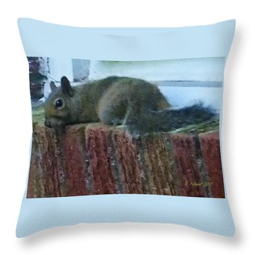 Throw Pillow featuring the photograph Inquisitor Visitor by Denise Fulmer