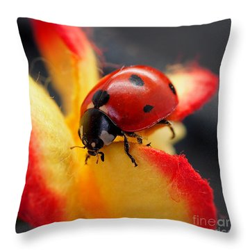 Insect Ladybug On A Paper Flower Throw Pillow