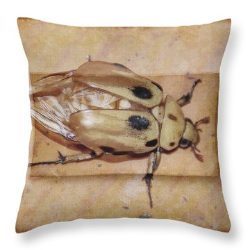 Insect On Wooden Board Throw Pillow