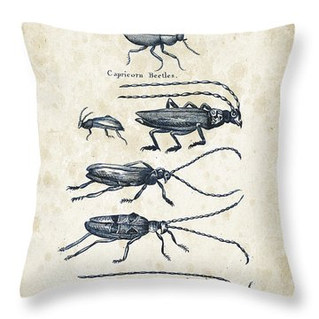 Insects - 1792 - 03 Throw Pillow