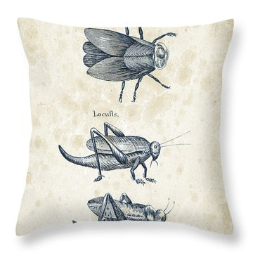 Insects - 1792 - 08 Throw Pillow