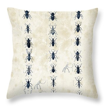 Insects - 1832 - 07 Throw Pillow