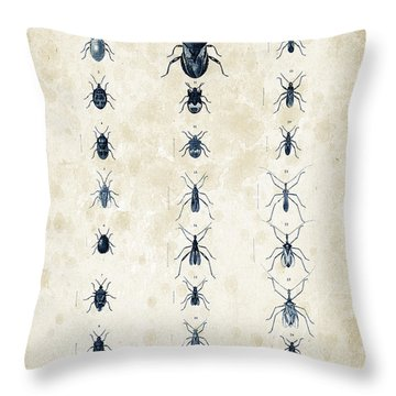 Insects - 1832 - 11 Throw Pillow