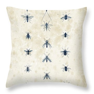 Insects - 1832 - 12 Throw Pillow