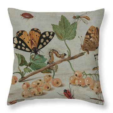 Insects And Fruit, Throw Pillow