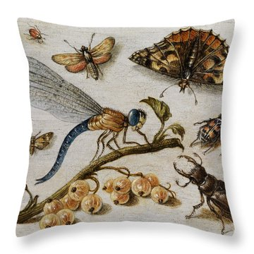 Insects, Currants And Butterfly Throw Pillow