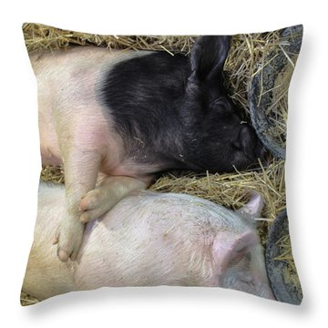 Inseparable Throw Pillow by Lori Deiter
