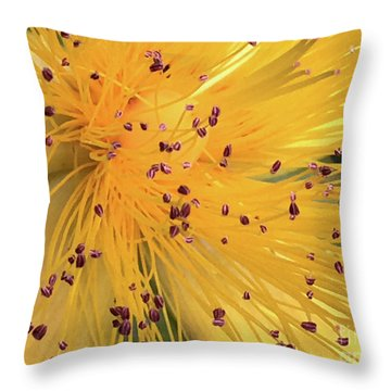 Inside A Flower - Favorite Of The Bees Throw Pillow
