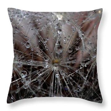 Inside A Universe Throw Pillow