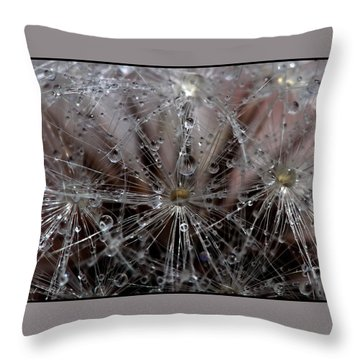 Throw Pillow featuring the photograph Inside A Universe by Farol Tomson