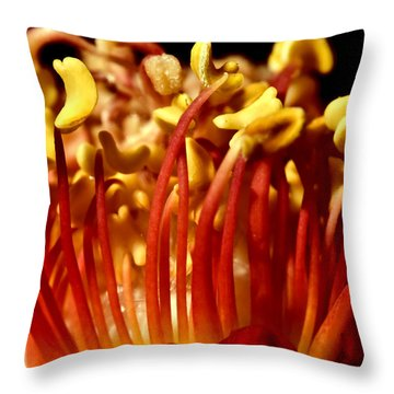 Inside Rose Throw Pillow by Svetlana Sewell