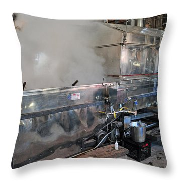 Inside The Sugar House Throw Pillow