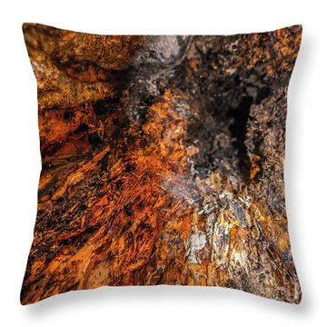 Insides Throw Pillow