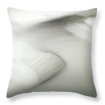 Inspiration Comes Standard Throw Pillow