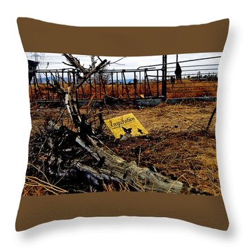 Inspiration Throw Pillow by Gilbert Artiaga