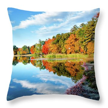 Inspiration Throw Pillow by Greg Fortier