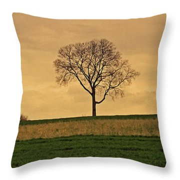 Inspiration Throw Pillow by Scott Mahon