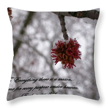 Inspirations 11 Throw Pillow