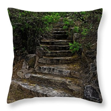 Throw Pillow featuring the photograph Instep With Nature V53 by Mark Myhaver