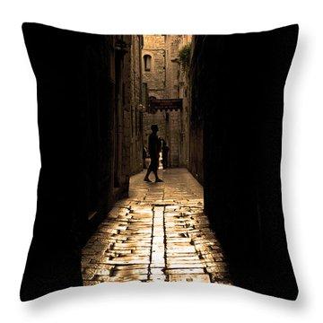 Insular Calm Throw Pillow by Andrew Paranavitana