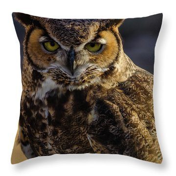 Intense Owl Throw Pillow