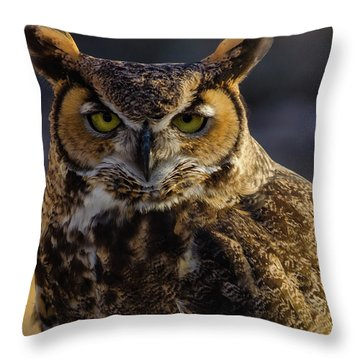 Intense Owl Throw Pillow