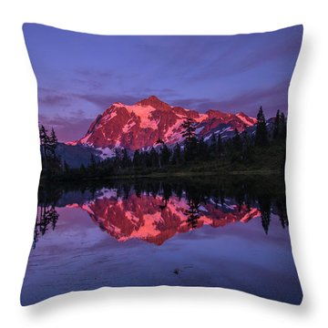 Intense Reflection Throw Pillow