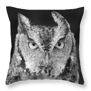 Throw Pillow featuring the photograph Intense Stare by Richard Bryce and Family