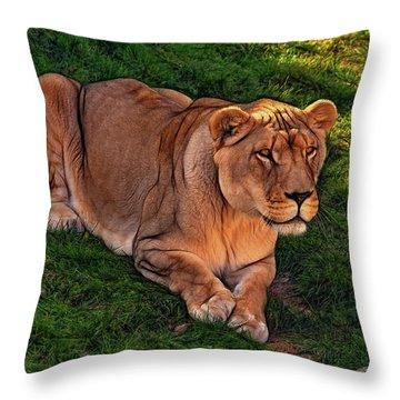 Intensity 3 Throw Pillow by Steve Harrington