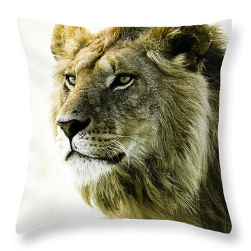 Intensity Throw Pillow by Michele Burgess
