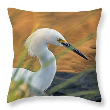 Intent Hunter Throw Pillow
