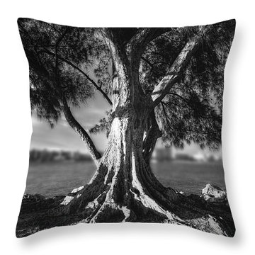 Intercoastal Pine Throw Pillow