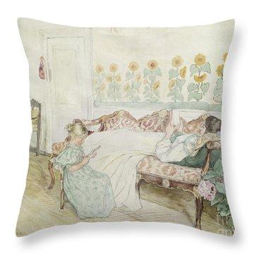 Interior Throw Pillow