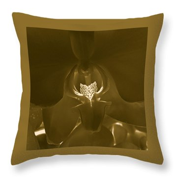 Interiors #2 Throw Pillow by William Feig