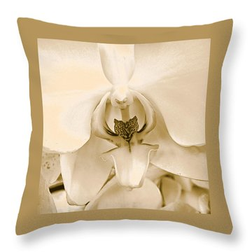 Interiors Throw Pillow by William Feig