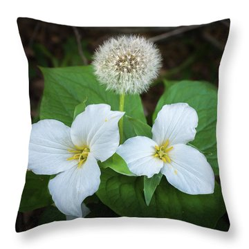 Throw Pillow featuring the photograph Interloper by Bill Pevlor