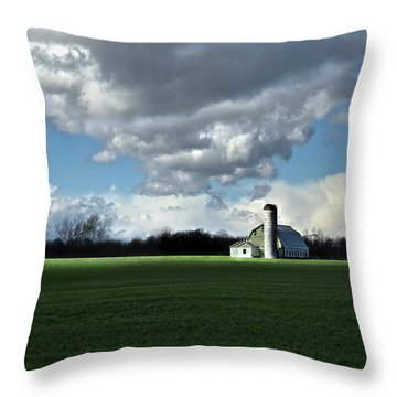 Throw Pillow featuring the photograph Interlude by Robert Geary