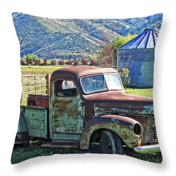 International Farm Throw Pillow