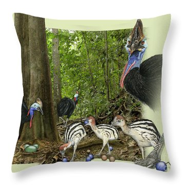 Zoo Nature Interpretation Panel Cassowaries Blue Quandong Throw Pillow