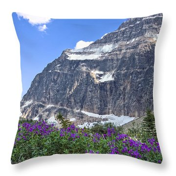 Interpretive Apps In The Canadian Rockies Throw Pillow