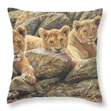 Interrupted Cat Nap Throw Pillow