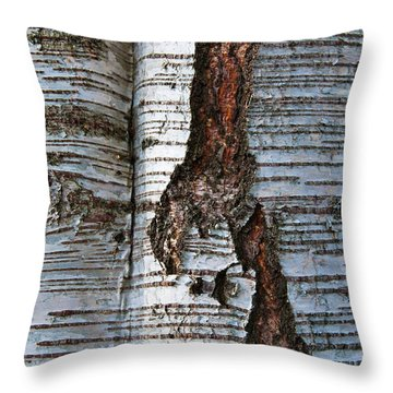 Throw Pillow featuring the photograph Interrupted by Werner Padarin